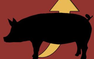 simbolo-cerdo-blog