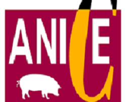 logo_anice2